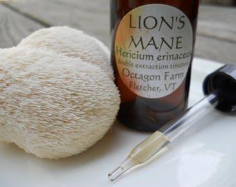 Lion's Mane Tincture, double extraction, Hericium erinaceus, Vermont mushroom elixir tonic natural memory brain medicinal extract dual nerve