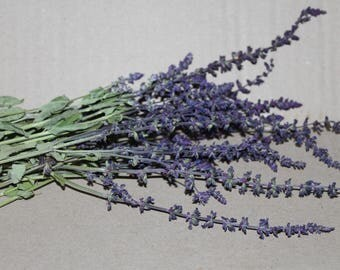 Salvia Officinalis, Dried Salvia Flowers, Dried Sage Flowers, Whole Herb, Common Sage Dried, Garden Sage Flower, Dried Sage, Dried Herb Sage