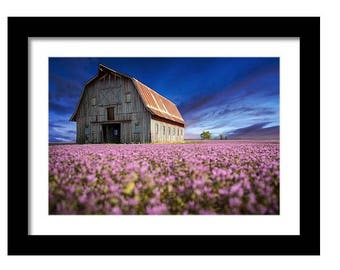 Bold Barns and Brilliant Skies Collection, Old Route 66 with Henbit, Fine Art Full Color Photographic Print