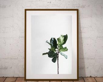 Green wall art- Botanical poster, minimalist print, wall art print, instant download, plant print, house plants, plant photography, modern