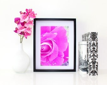 Pink Stunner, Floral Photography, 6x8 matted print, wall art, matted photo, 6x4 print, Flower print, Flower Photo, Modern Art