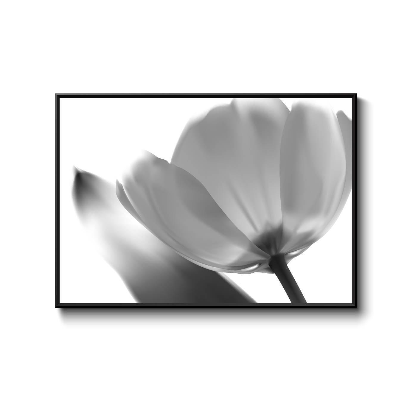 Black And White Flower Poster For Living Room Office Design Home