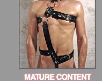 Full body harness DESIGN-2