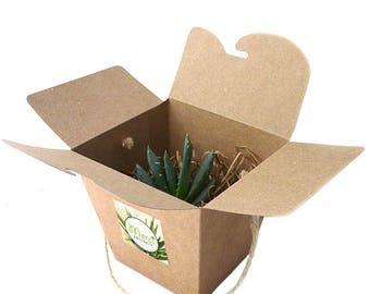 La Boîte à Nouilles Chinoises Succulente Kraft et Corde Naturelle : cadeau aux invités personnalisé, mariage , baptême, anniversaire