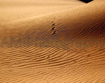 dune sand desert brown photo art