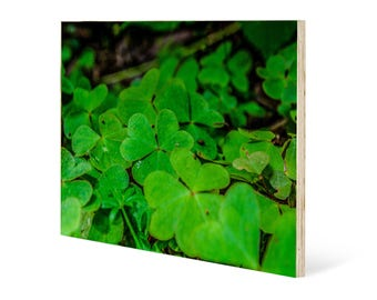 Clover patch wall art, printed on maple wood panel