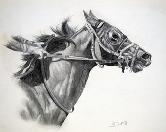 Original horse sketch, horse drawing by Kathy Chism