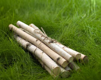 7 wood stick, birch sticks, wood decor, Birch Log, White Birch branches, decorative birch wood, birch logs, craft wood, eco wood, eco decor