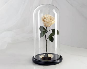 Beauty and the Beast Rose (Large), Enchanted Rose, Rose in glass dome, Forever red rose, Rose in Glass, preserved rose, preserved flower