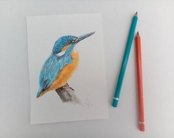 Kingfisher, artwork