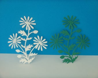 Together to create white and green Daisy flower