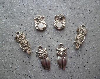 6 owls charms in silver 20 mm approx