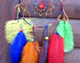 Dream catcher-Multicolor / ostrich feathers / actual 45 cm