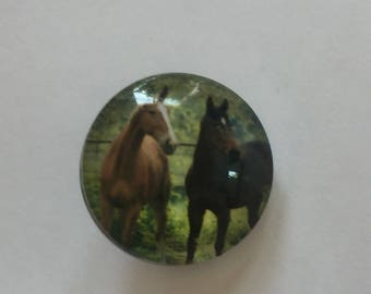 Snap 1.8 cm Brown horse