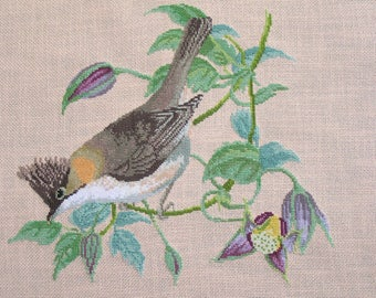 Yuhina red neck cross stitch Embroidery