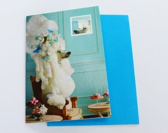 card dog headdress Marie Antoinette greeting card with envelope, small window