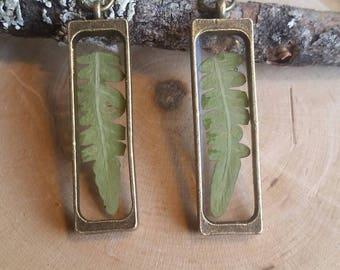 Fern earrings - Fern dangle earrings - Botanical jewelry - Dried flower jewelry - Resin earrings