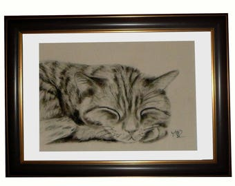 Portrait of cat in charcoal: cat NAP
