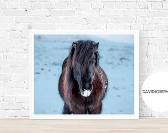 Horse Print, Horse Wall Art, Horse Poster, Animal Art, Nursery Print, Nursery Horse,  Horse Photography, Digital Download, Horse Decor, Snow