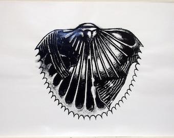 original art print /serigraph art / silkscreen print / black and white / home decor art / sea fossils / 'Seashell'