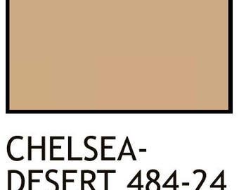 touch up pigments Chelsea-Desert 484-24 2 Oz