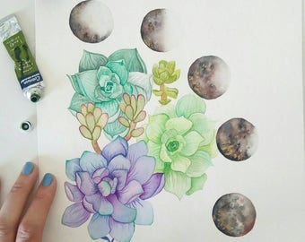 Succulents and moon phases