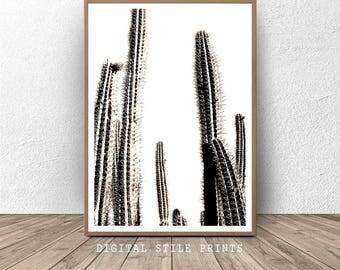 Cactus Black and White, Cactus Wall Art, Cacti Printable, Cactus Photo, Cactus Plant Print, Digital Download, Succulent Print, Home Decor