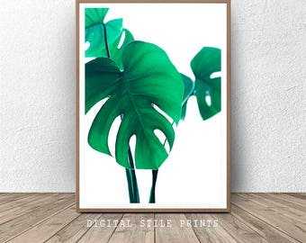 Monstera Print, Green Plant Print, Leaf Printable, Philodendron Print, Minimalist Poster, Wall Art Print, Monstera Leaf, Home Decor