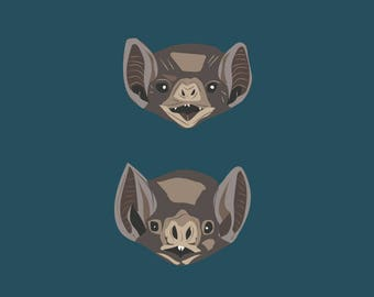 Vampire Bat Illustration Print