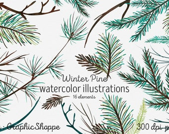 Watercolor Pine Tree Branches | Winter Clip Art | Rustic Nature Watercolor Pine Sprigs | Woodland Forest Holiday Christmas Digital Graphics