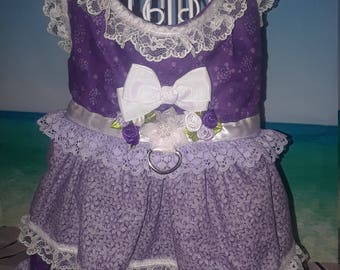 Purple Delight Dog Dress