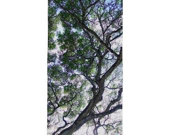 Hawaiian Koa Tree Beach Towel