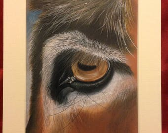 Eye of a Donkey - mounted print from my original pastel artwork