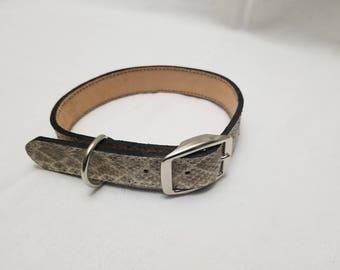 Diamondback Rattlesnake Skin Leather Dog Collar