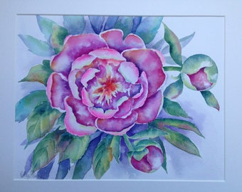 Peonies. Original watercolor painting