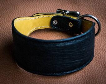 Greyhound, antelope collar, steel buckle. Dog Collar Greyhound