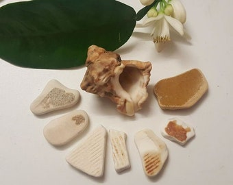 Sea Pottery Shards, warm earth tones, Set of 7 pieces, Vintage