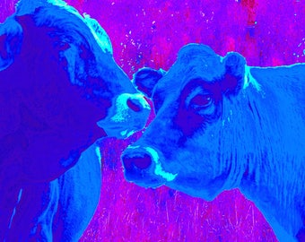"Blue Cows - PRINT - (14"" x 11"") FREE SHIPPING!"
