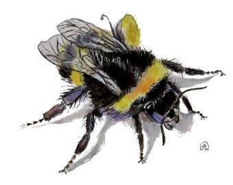 3D bumblebee art watercolor print