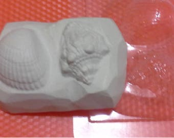 Soap mold, Icetray, Form for chocolate, Clean, the Shell, the Sea, the Shell on a stone