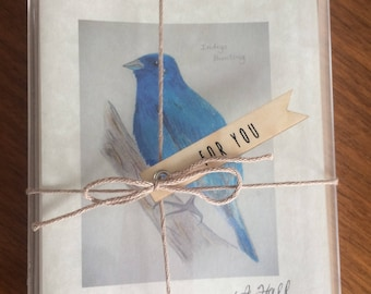 Hand-Sketched Indigo Bunting Folded Notecard Set/Blessing