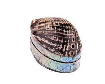 abalone seashell box