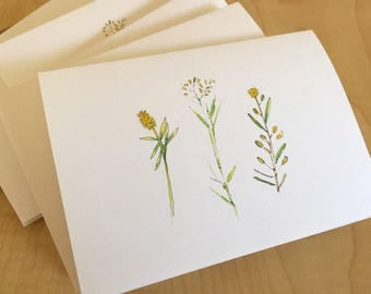 Watercolor Blank Note Cards - Delicate Weed Trio - Weed Cards - Wildflowers - Botanical Note Cards - Set of 6