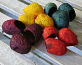 Mulberry Silk Cocoons - Cut Cocoons - Fiber Art Supplies - Yellow, Burgundy, Green, Orange Cocoons - Autumn Leaves
