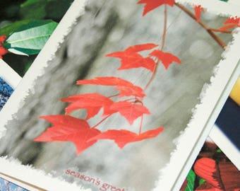 Handmade Holiday Card Sampler