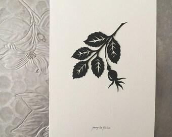 Rose Hip II Silhouette Papercutting