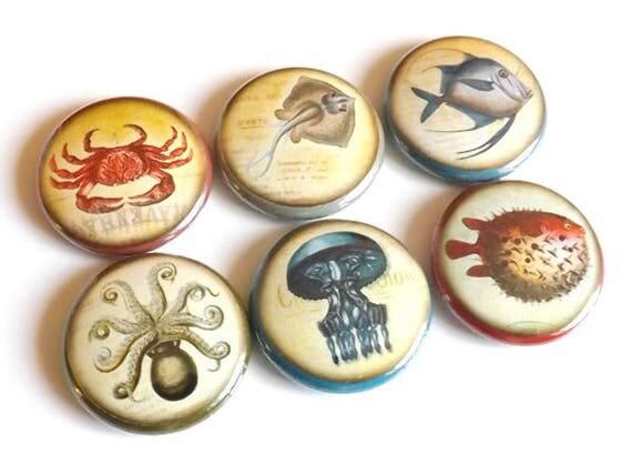 Fish Ocean Sea refrigerator button magnets 1 inch nautical crab jellyfish puffer octopus gift party favors stocking stuffer flair pins beach