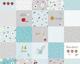 20%OFF Riley Blake Designs Sweet Orchard Designer Cloth Aqua