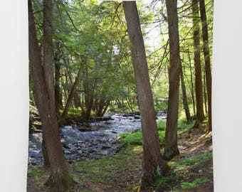 Wall Tapestry Wall Hanging Sofa Throw Landscape Photo 27 Woods Forest Trees River Home Decor