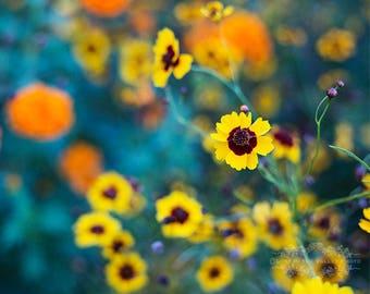 Flower Photograph, Floral Home Decor, Fine Art Photography, Yellow Flowers, Nature Photo, Dreamy Wall Art, Wall Decor, Summer, Orange, Green